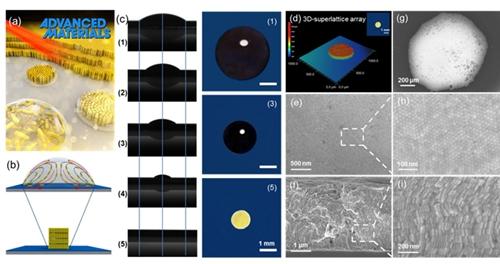 可推广到各种不同的纳米材料中